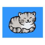 cute fluffy tabby gray tiger cat postcard