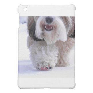 Cute Fluffy Tibetan Terrier Snow Paw iPad Mini Cases