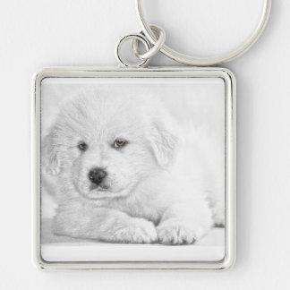 Cute Fluffy White Puppy Keychain