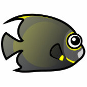 Cute French Angelfish
