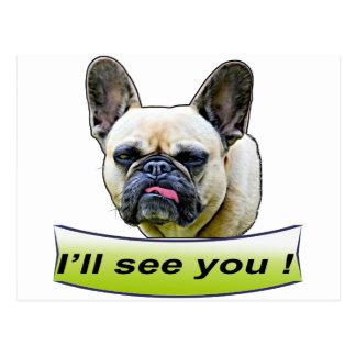 Cute French Bull Dog Postcard