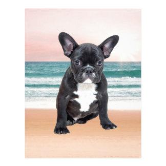 Cute French Bulldog Beach Sun Water Letterhead