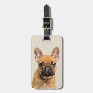 Cute French Bulldog Luggage Tag
