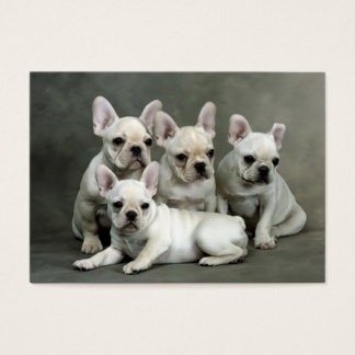 Cute French Bulldog Puppies Business Card