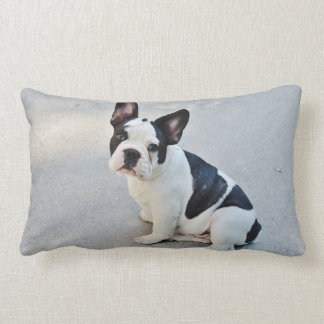 Cute French Bulldog Puppy black white Lumbar Pillow