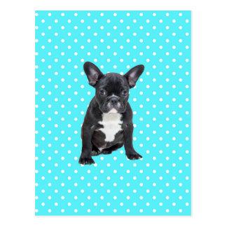 Cute French Bulldog Puppy Blue Polka Dots Postcard