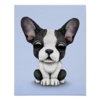 Cute French Bulldog Puppy Dog on Light Blue Poster
