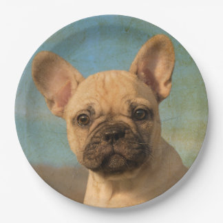 Cute French Bulldog Puppy Vintage, Happy Party Paper Plate