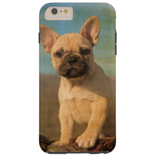 Cute French Bulldog Puppy, Vintage Phonecase Tough iPhone 6 Plus Case