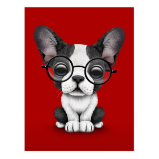 Cute French Bulldog Puppy with Glasses, red Postcard
