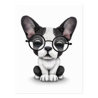 Cute French Bulldog Puppy with Glasses, white Postcard