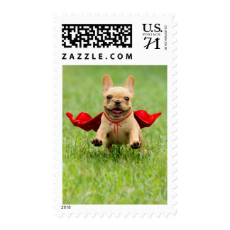 Cute French Bulldog Superhero Runs in Grass Postage