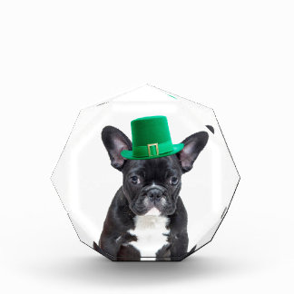 Cute French Bulldog with Hat St. Patrick's Day Award
