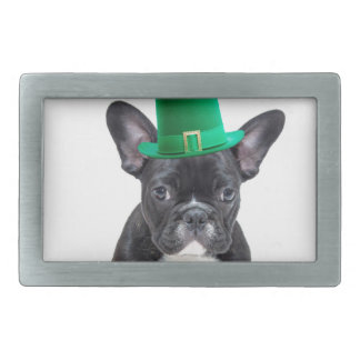 Cute French Bulldog with Hat St. Patrick's Day Belt Buckles