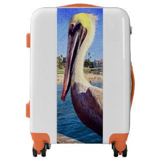 Cute, friendly beach pier pelican bird photo luggage