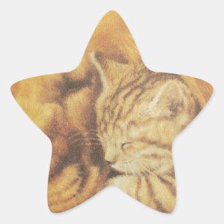 Cute Friendly Cat & Dog Hakuna Matata Gift Relatio Star Sticker