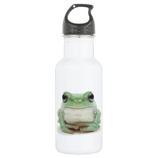 Cute Frog 16 oz. Water Bottle
