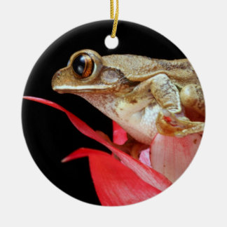 Cute frog perched on red flower photo ornament