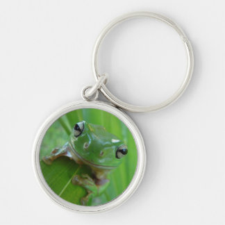 Cute Frog Premium Keychain