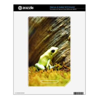 Cute Frog NOOK Color Decals