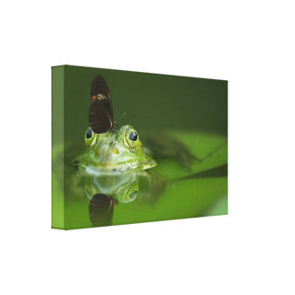 Cute frog with a Butterfly on his nose Canvas Print