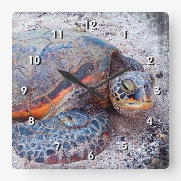 Beach Themed Cute Fun Friendly Hawaii Sea Turtle Close-up Photo Square Wall Clock