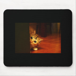 cute_funny_animals_28 kitten cat sneaking peering mouse pad