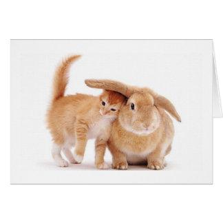 cute_funny_animals_8  kitten bunny rabbit friends card