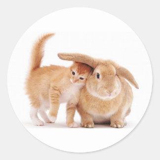 cute_funny_animals_8  kitten bunny rabbit friends classic round sticker