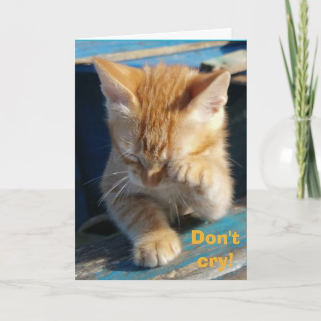 Tabby Cat Birthday Card cute Birthday Wishes With Love greetings