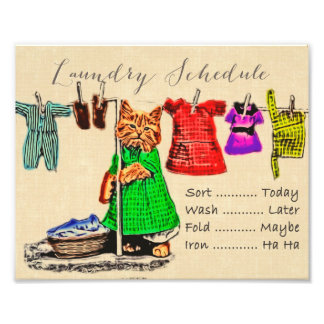 Cute Funny Cat Laundry Schedule Sign Wall Art Photo Print