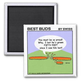 Cute Funny Caterpillar Cartoon Fridge Magnet