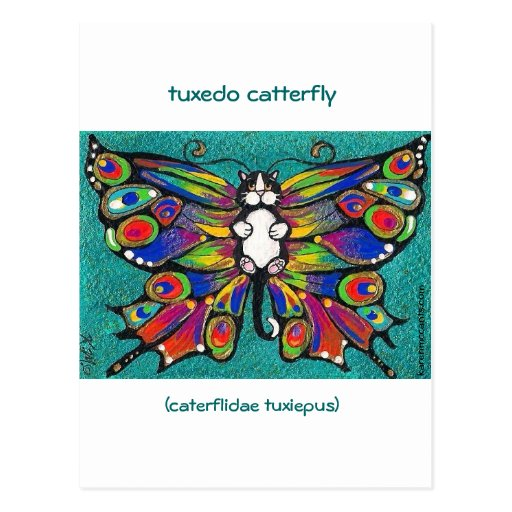 Cute Funny Catterfly Art CAT & Butterfly creature! Postcards