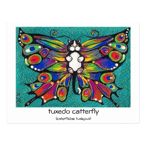 Cute Funny Catterfly Art CAT & Butterfly creature! Post Card