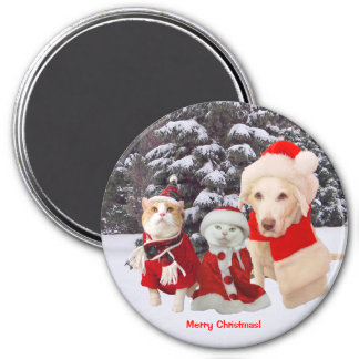 Cute/Funny Christmas Pets Magnet