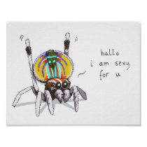 Cute Funny Colourful Peacock Spider Drawing Poster