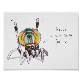 Cute Funny Colourful Peacock Spider Drawing Poster at Zazzle