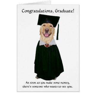 Cute/Funny Dog Graduation Card