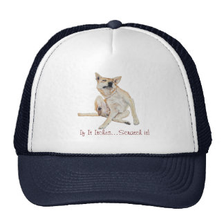 Cute funny dog scratching art with humorous slogan mesh hat