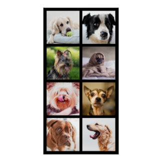 Cute & Funny Dogs Photo Collage Poster 2