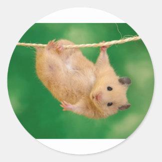 cute funny little guy classic round sticker