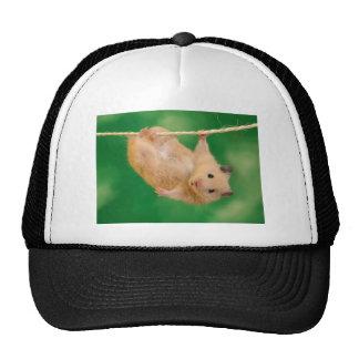 cute funny little guy trucker hat