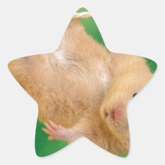 cute funny little guy star sticker