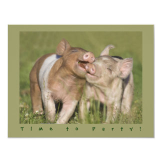Cute Funny Piglets Birthday Party Personalized Invite