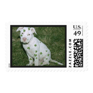 Cute Funny Pitbull Postage Stamp