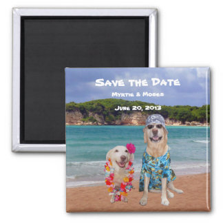 Cute/Funny Save the Date Dogs Beach Wedding Magnet