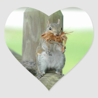 Cute Funny Squirrel Stickers