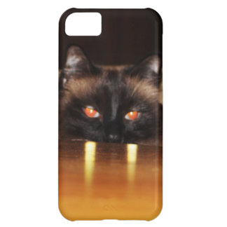 Cute, funny, vampire cat cover for iPhone 5C