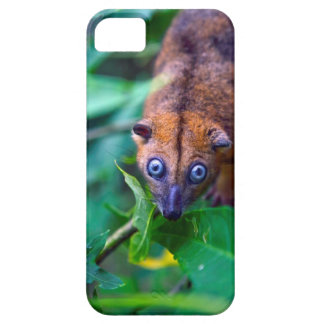 Cute furry cuscus possum looking at camera iPhone SE/5/5s case