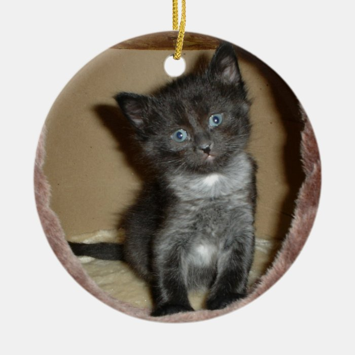 Cute Fuzzy Baby Kitty Love Ceramic Ornament